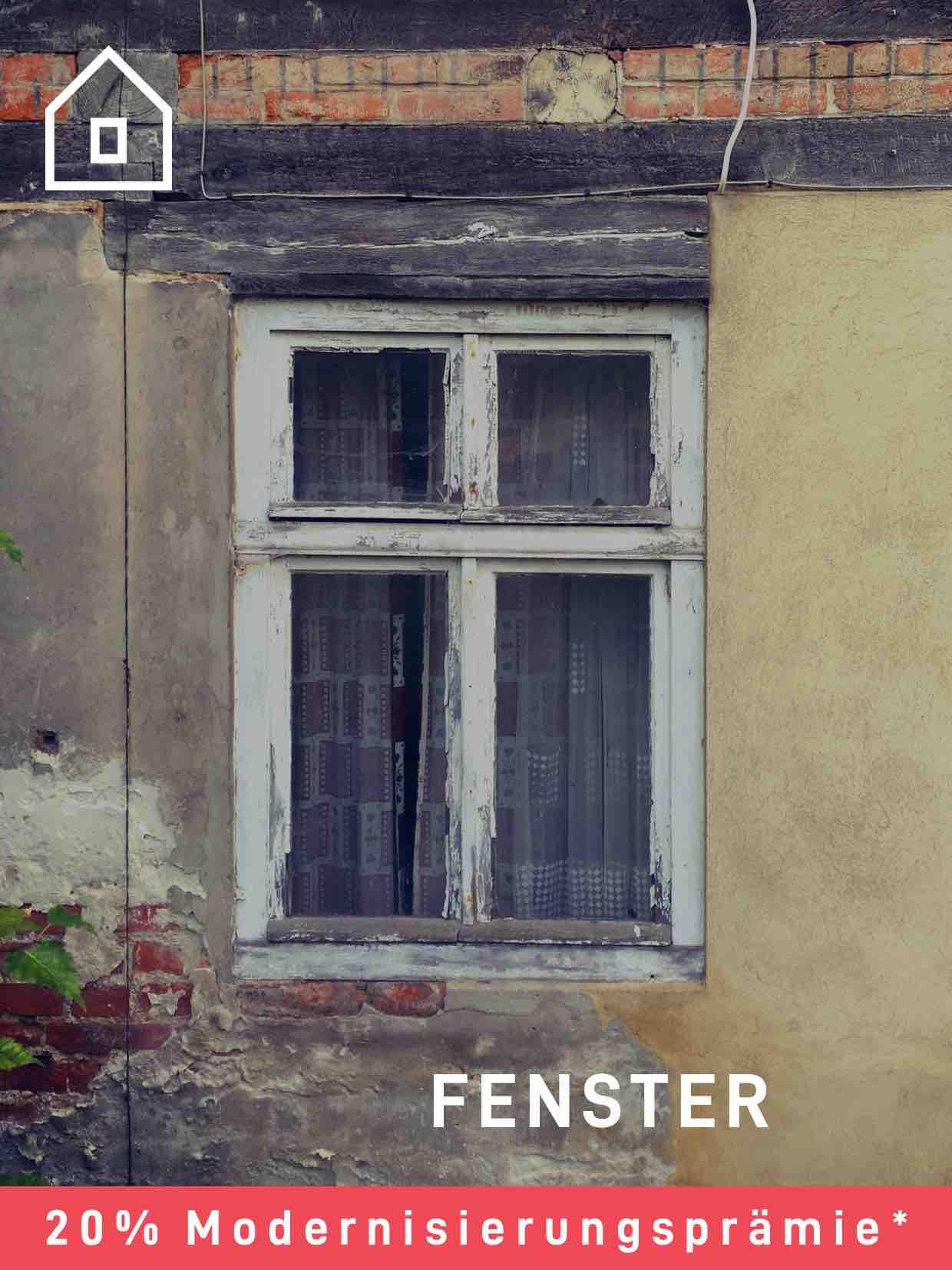 Fenster 20